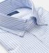 Blue University Stripe Heavy Oxford Soft Ivy Button Down Shirt Thumbnail 2