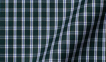 Thomas Mason Non-Iron Forest Small Check Fabric Sample