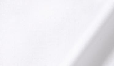 Thomas Mason White Pinpoint Fabric Sample