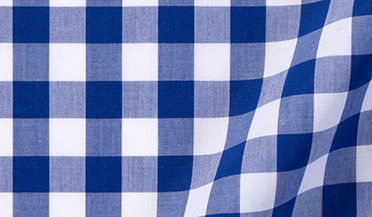 Fabric swatch of Royal Blue Large Gingham Fabric